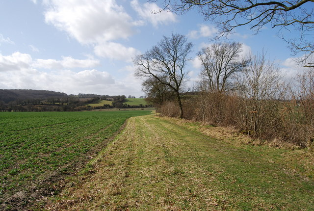 Footpath along the edge of the field