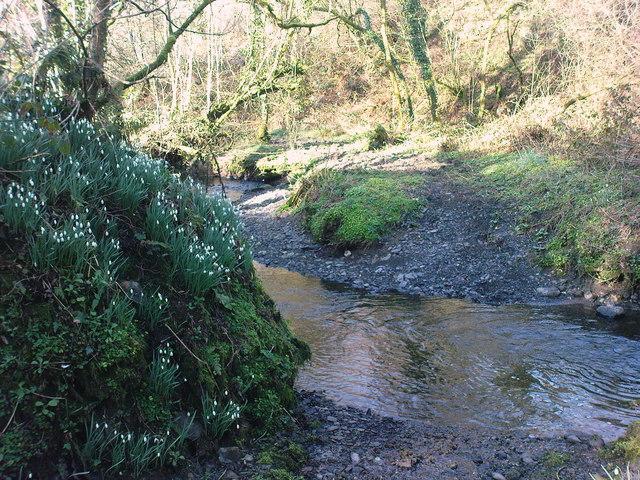 Walton East tributary