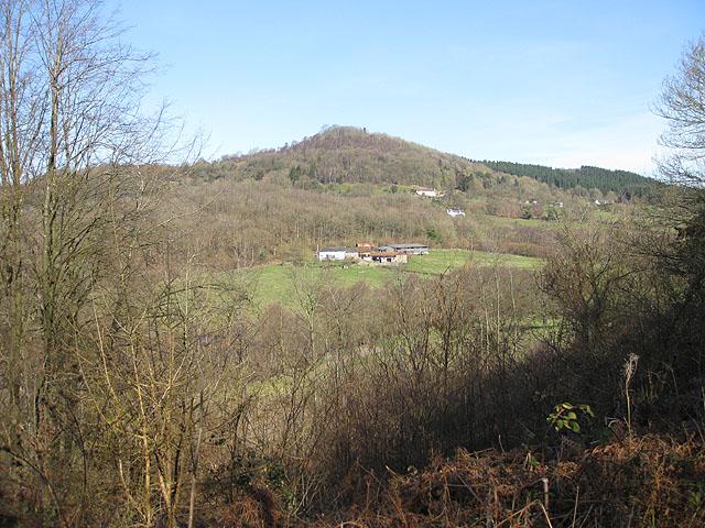 Across the Pentaloe Valley to Bear's Wood