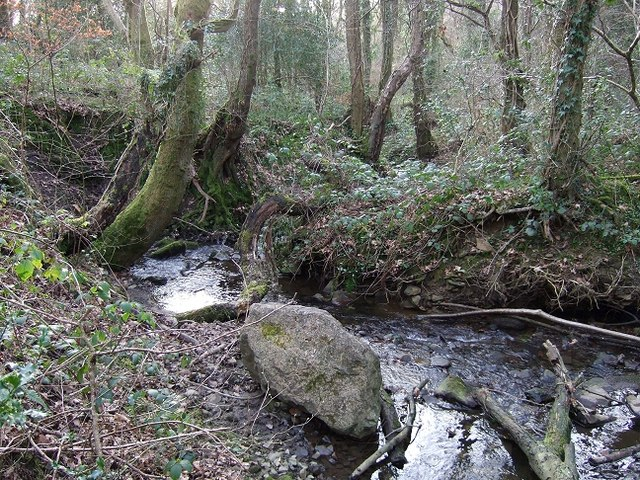 Stream adjacent to the Bedwas to Machen Cycleway