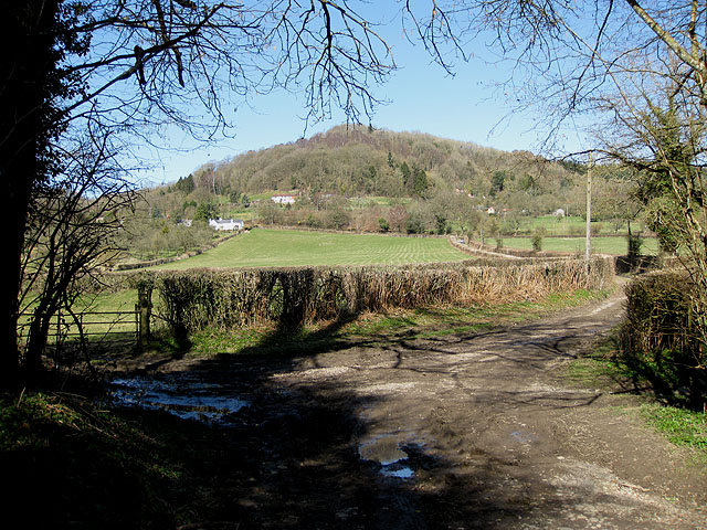 View to Backbury Hill (225m)