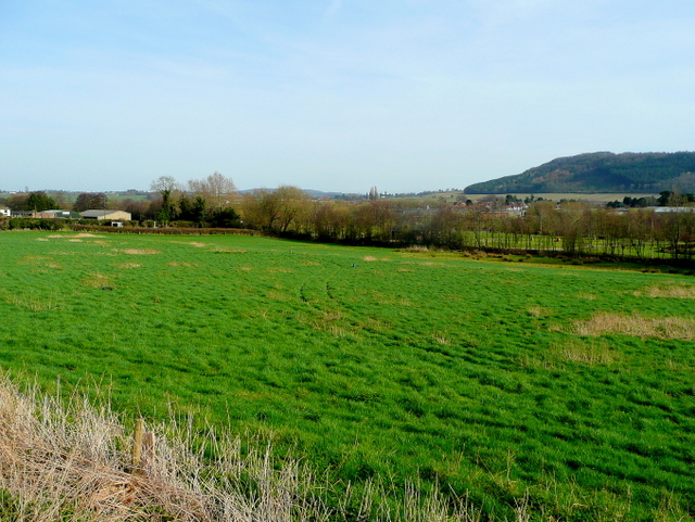 Pasture land at Overross