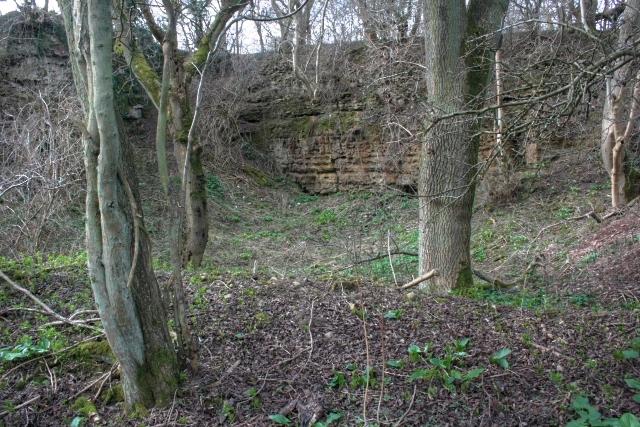 Disused Quarry, Low Moor