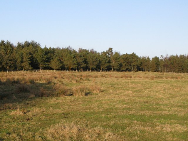 (Site of the) Roman Camp south of Limestone Corner