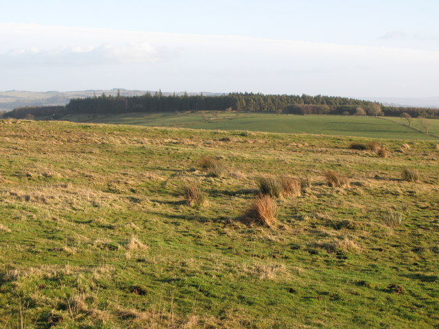 (Site of the) Roman Camp south of Limestone Corner (2)
