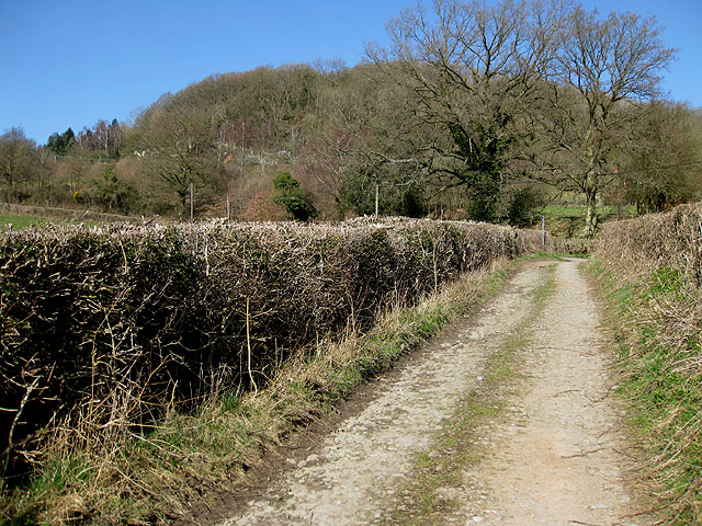 Approaching the end of a bridleway