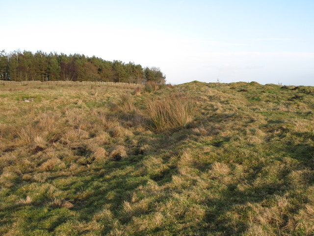 (Site of the) Roman Camp south of Limestone Corner (3)