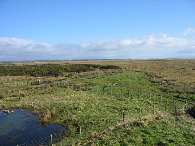 Caerlaverock Nature Reserve from Saltcot Merse Observatory