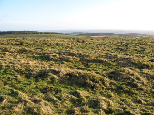 (Site of the) Roman Camp south of Limestone Corner (4)