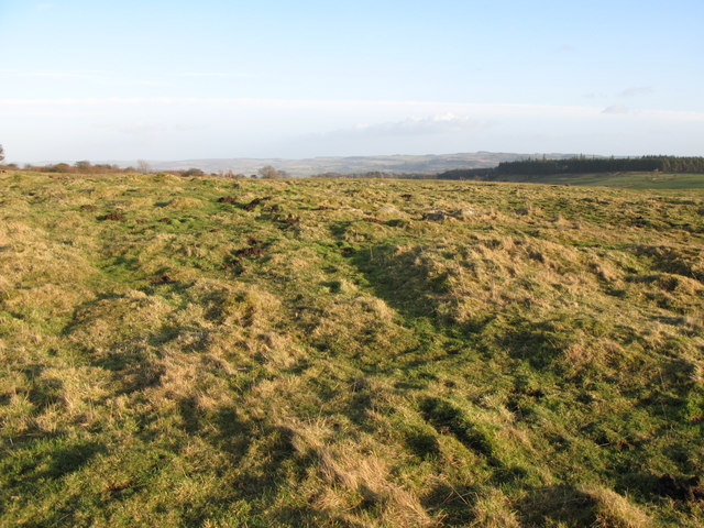 (Site of the) Roman Camp south of Limestone Corner (5)