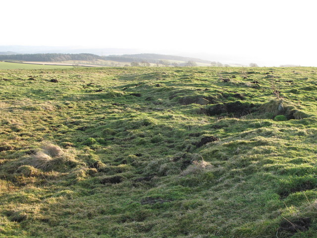 (Site of the) Roman Camp south of Limestone Corner (7)