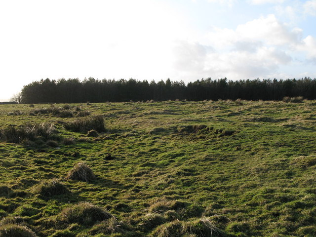 (Site of the) Roman Camp south of Limestone Corner (9)
