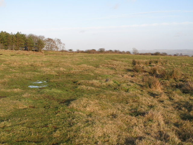 (Site of the) Roman Camp south of Limestone Corner (10)