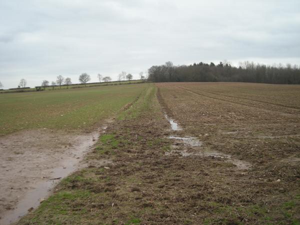 Bridleway near Rhodes Farm