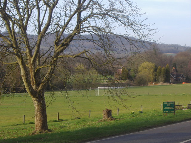 Ockley Cricket Club