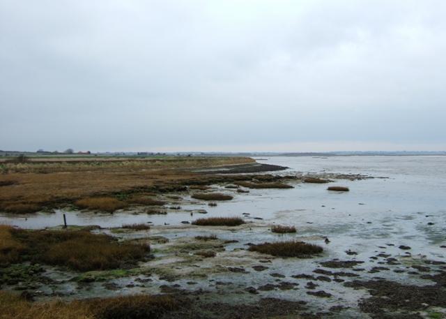 Sea wall at the Wade