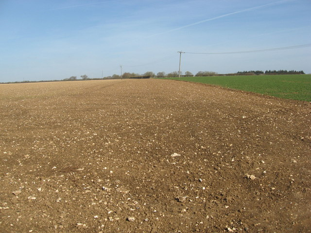 Freshly tilled land near Grateley