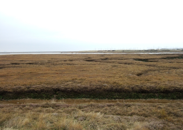Tidal marshes, The Wade