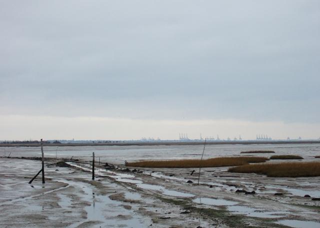 Causeway to Horsey Island
