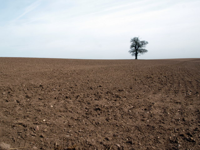 Ploughed Field, Walton On The Hill, Staffs