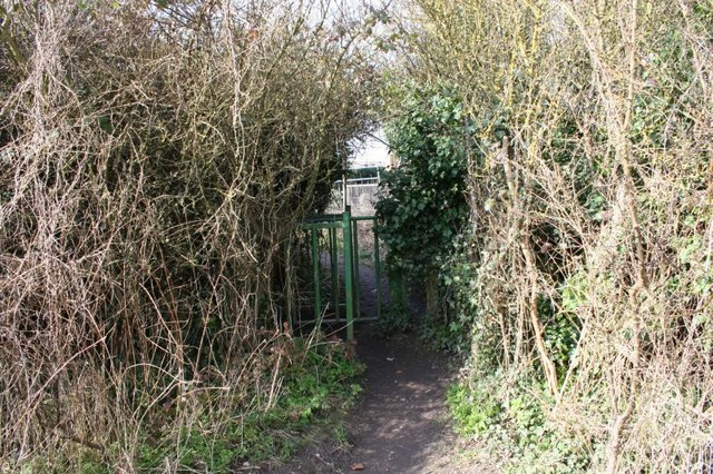 Gate to the road