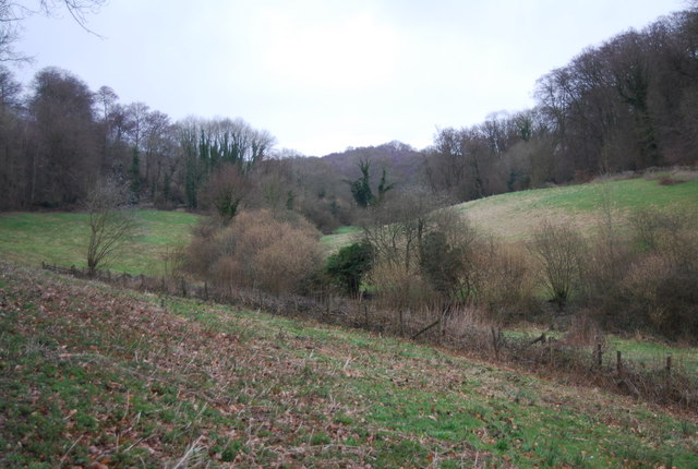 Wooded Valley, East of Selborne