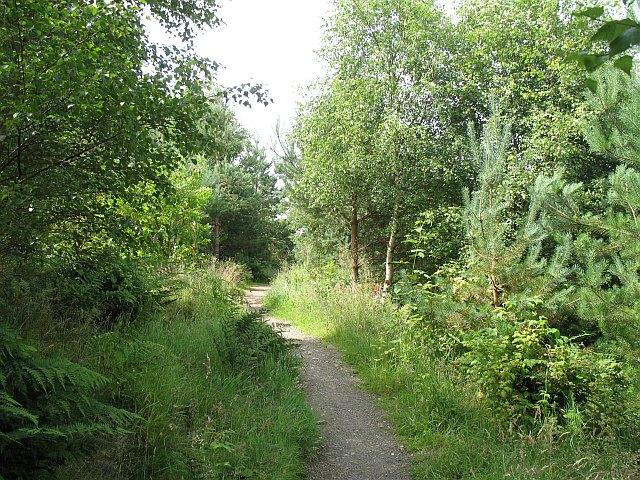 Tantah Trail, Cademuir Plantation