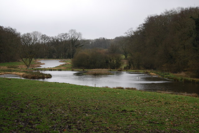 Fishing ponds near Selborne