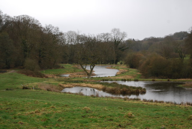 Fishing ponds near Selborne (2)