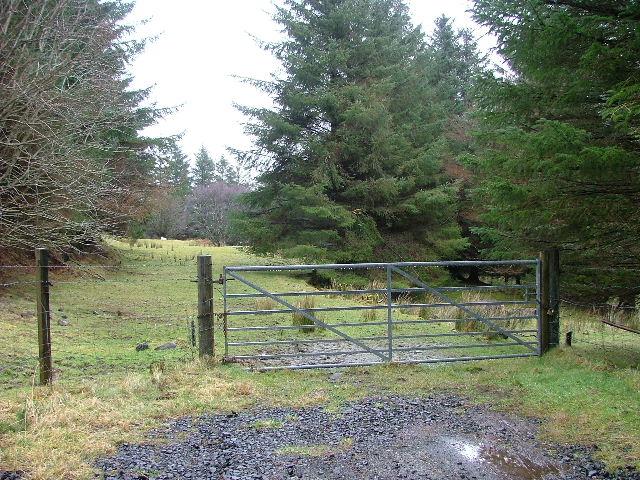 Woodland at Conordan