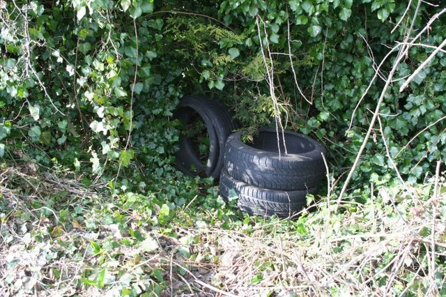 Tyres in the hedge