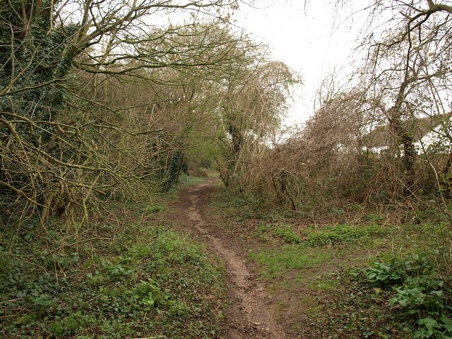 Path near Comeytrowe