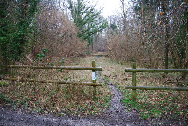 Forestry Commission permissive path, Wick Wood