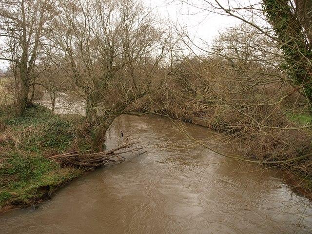 River Tone at Hele Bridge