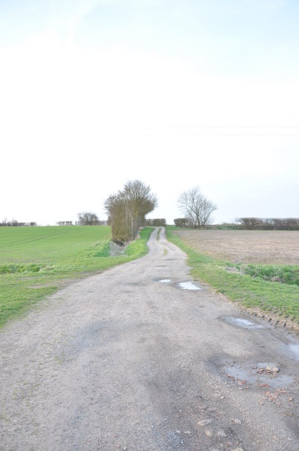 Lane from the church, Beauchamp Roding