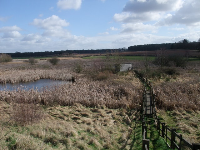 Bird hide on the Clumber Wetland