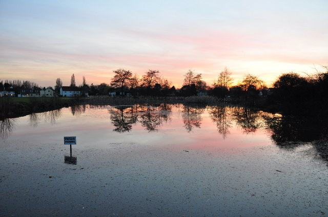 Pond at sunset, Matching Green