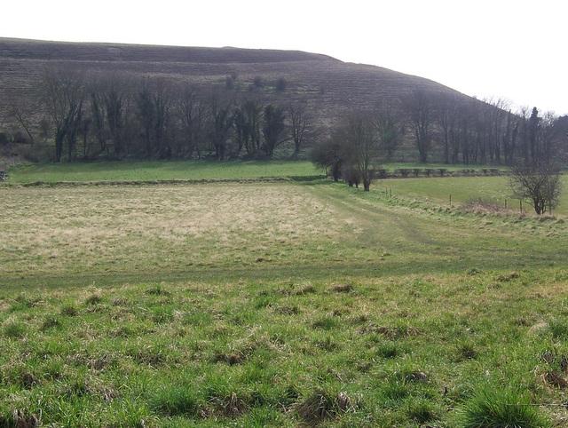 Footpath, Middleton Farm