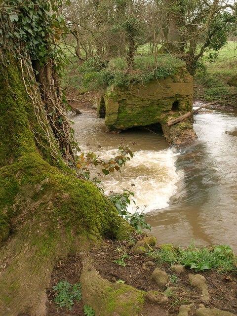 Weir, River Tone