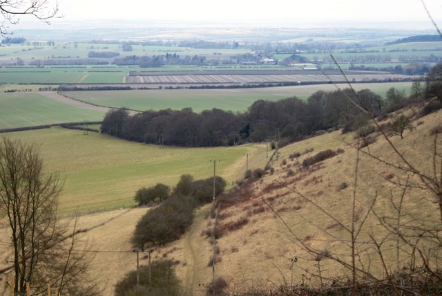 Bald Hill, Aston Rowant National Nature Reserve