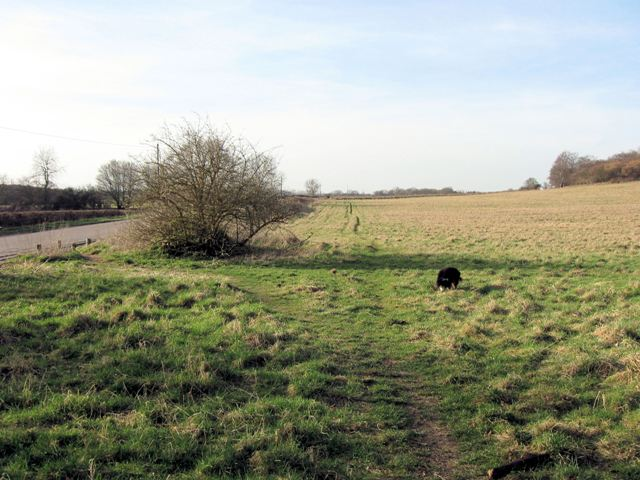A large unfenced hay meadow