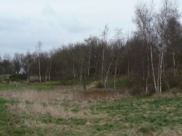 Sandy Banks Nature Reserve