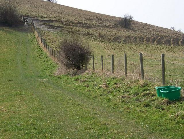 Imber Range Path