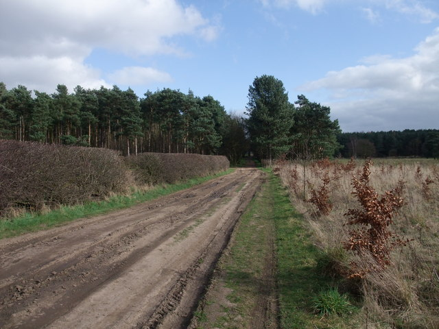 Bridleway towards Crookford Farm