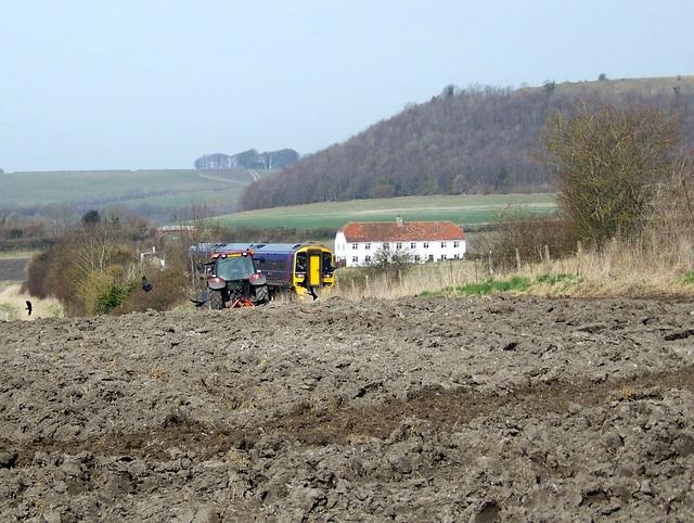 Plough near Norton Bavant