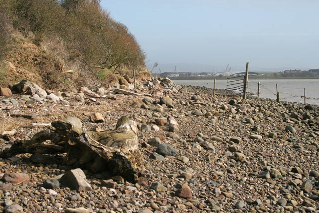 Shore on Bazil Point