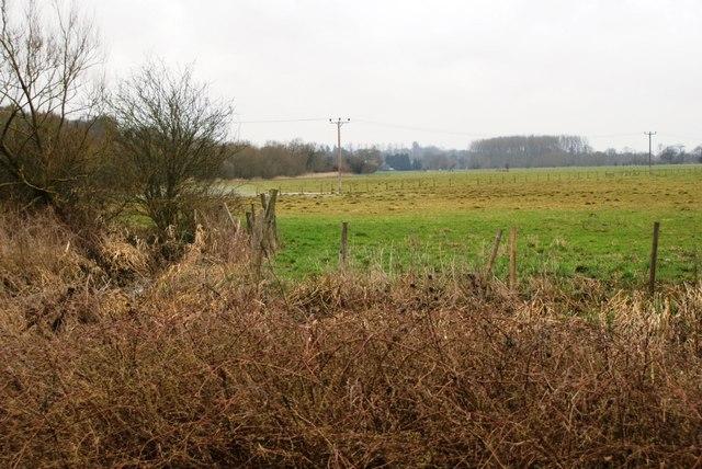 Looking across the flood plain towards Sonning