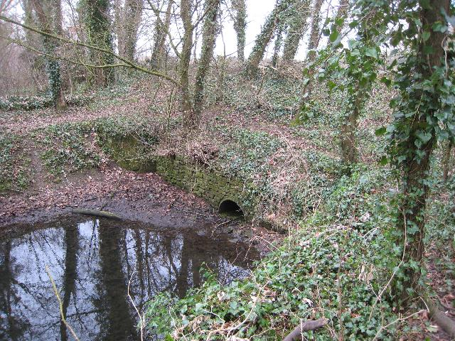 Remains of Park Leaze Bridge