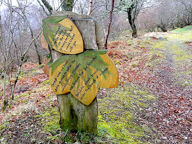 Pathside poetry in Abriachan Woods