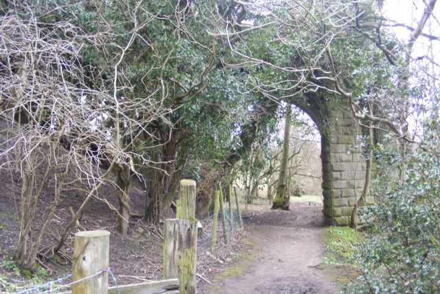 Remains of the railway bridge over the Nidd river 2